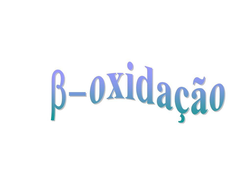 oxidação b-