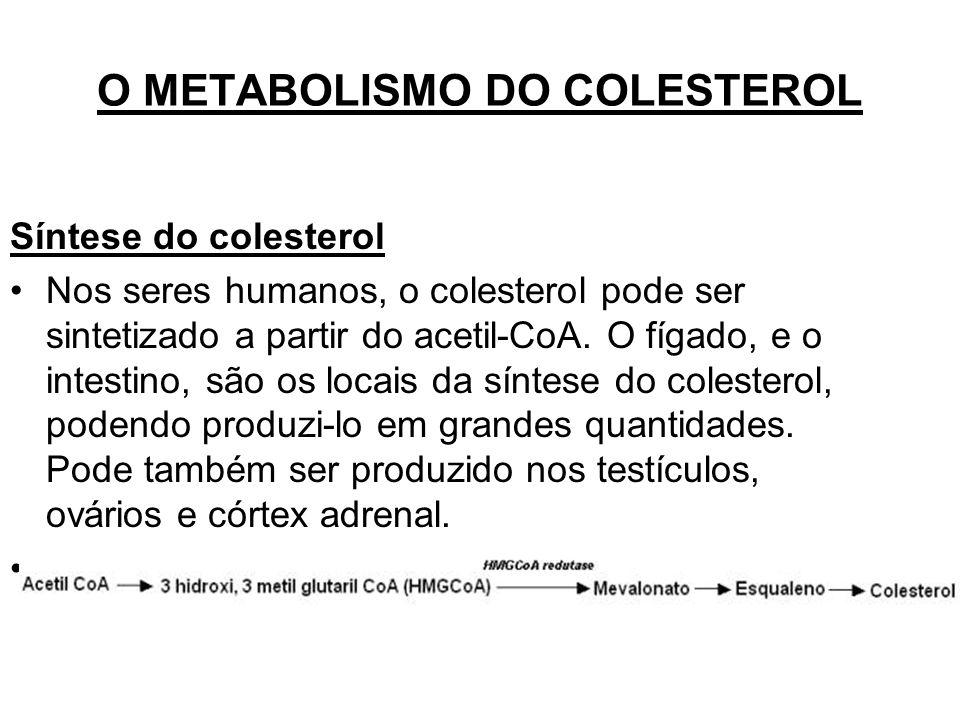 O METABOLISMO DO COLESTEROL