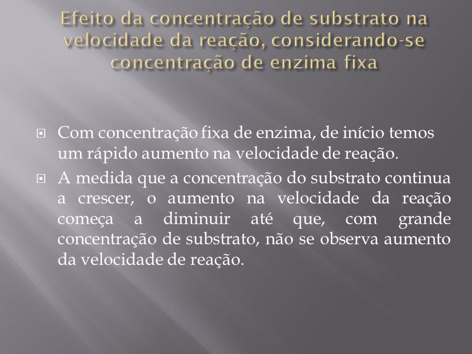Efeito da concentração de substrato na velocidade da reação, considerando-se concentração de enzima fixa