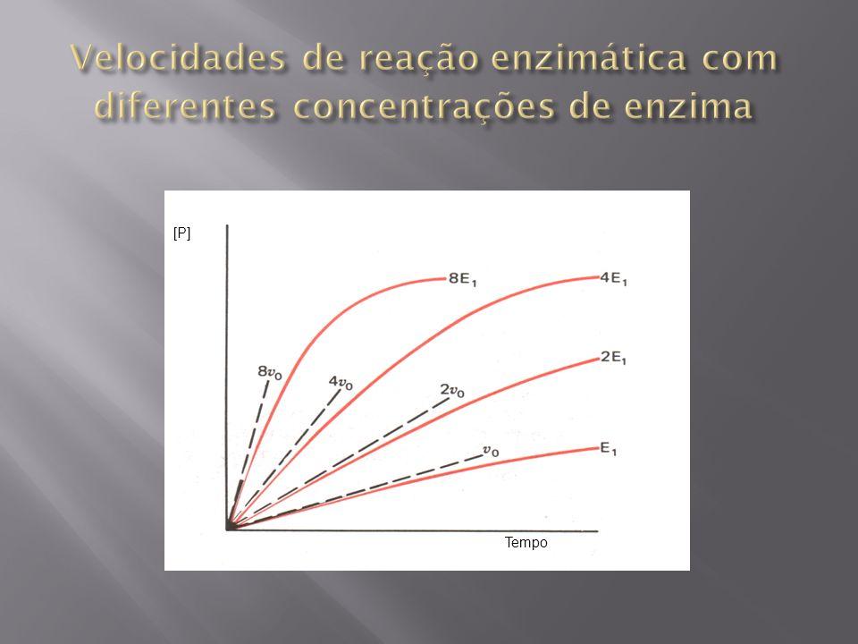 Velocidades de reação enzimática com diferentes concentrações de enzima