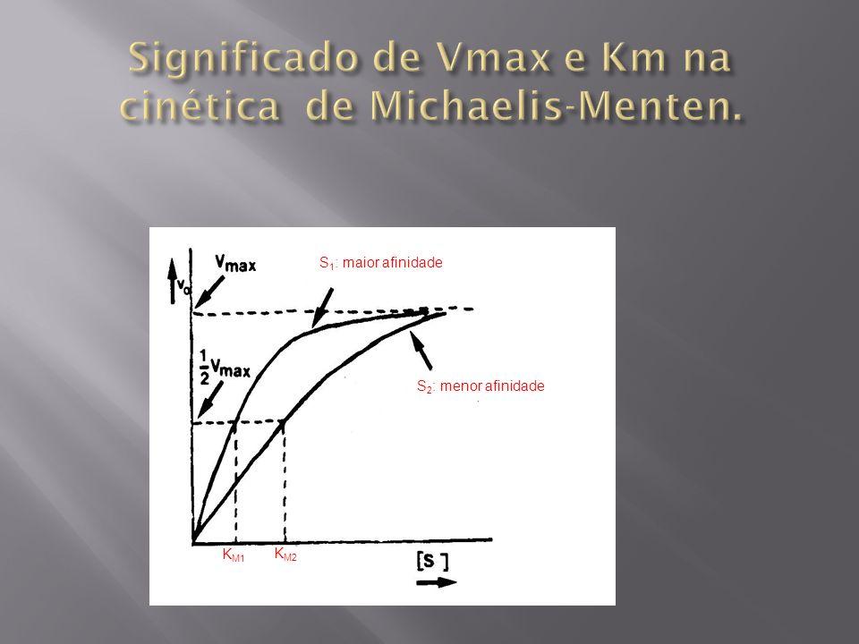 Significado de Vmax e Km na cinética de Michaelis-Menten.