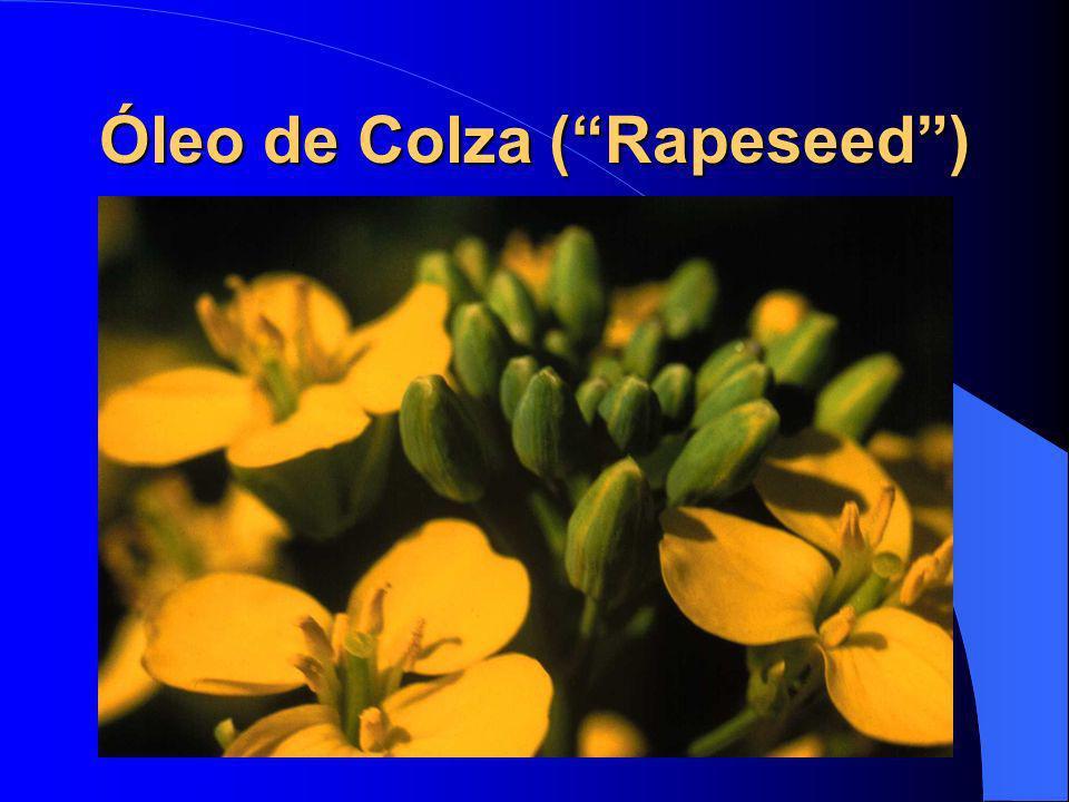Óleo de Colza ( Rapeseed )