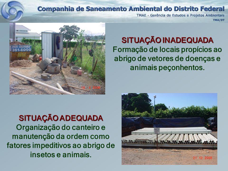 SITUAÇÃO INADEQUADA Formação de locais propícios ao abrigo de vetores de doenças e animais peçonhentos.