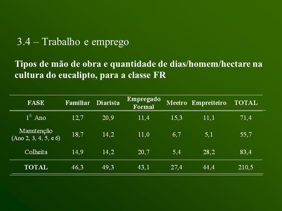 3.4 – Trabalho e empregoTipos de mão de obra e quantidade de dias/homem/hectare na cultura do eucalipto, para a classe FR.