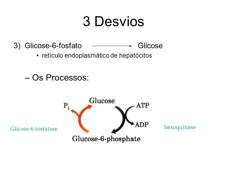 3 Desvios Os Processos: 3) Glicose-6-fosfato Glicose
