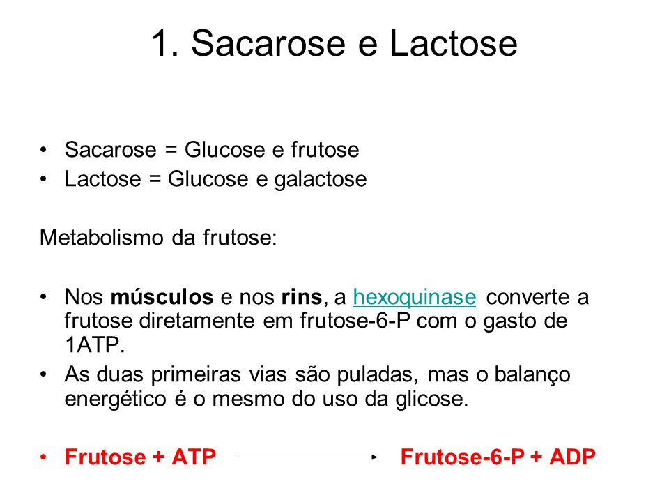 1. Sacarose e Lactose Sacarose = Glucose e frutose