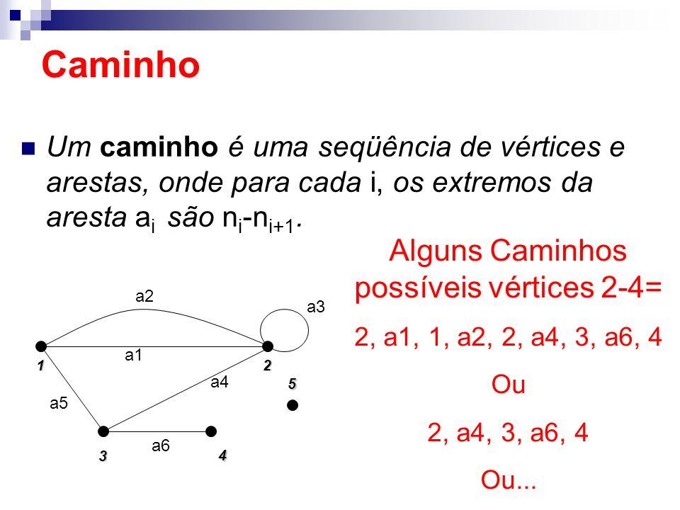 Alguns Caminhos possíveis vértices 2-4=