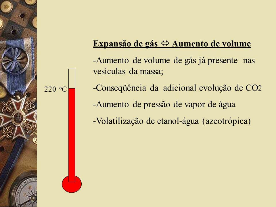Expansão de gás  Aumento de volume