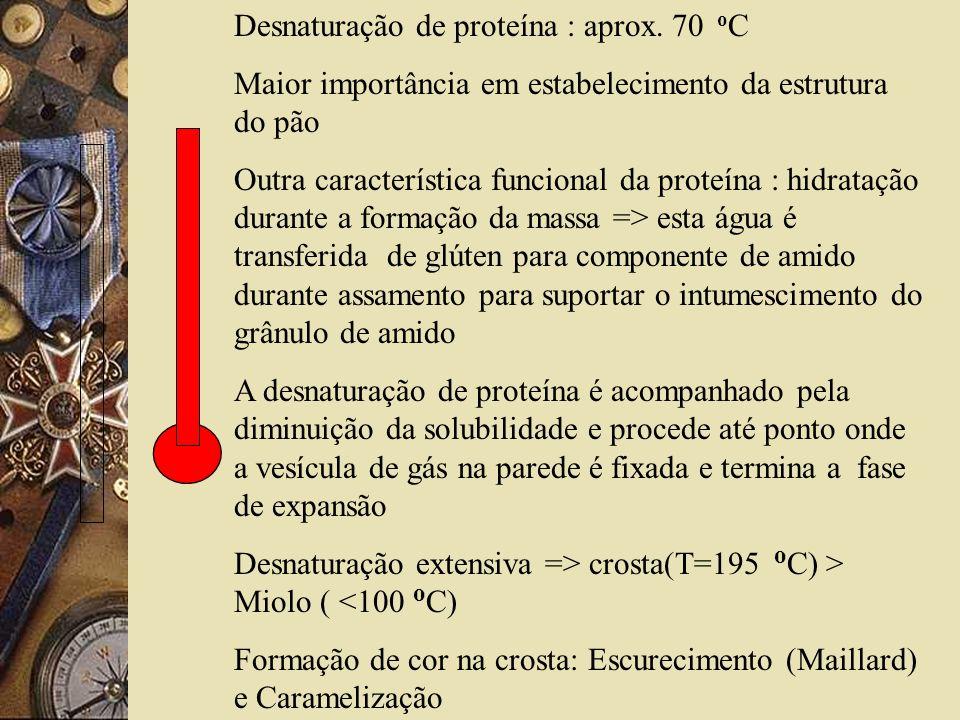 Desnaturação de proteína : aprox. 70 oC