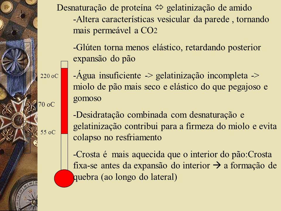 Desnaturação de proteína  gelatinização de amido