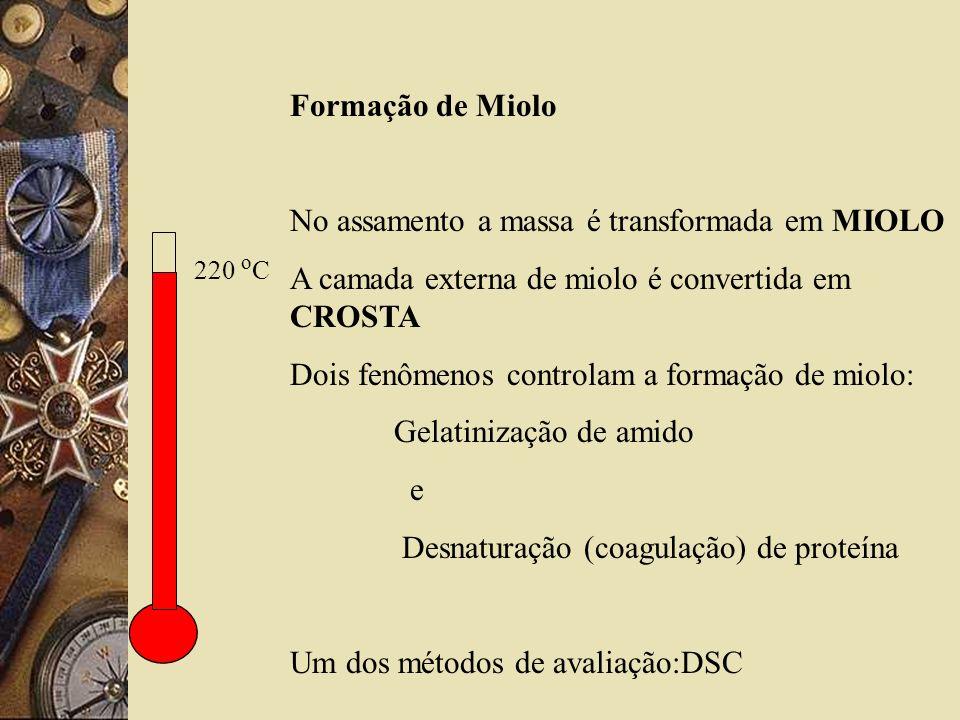 No assamento a massa é transformada em MIOLO