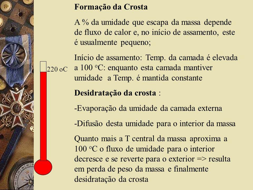 Desidratação da crosta : -Evaporação da umidade da camada externa