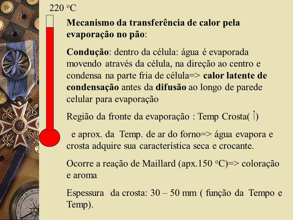 220 oC Mecanismo da transferência de calor pela evaporação no pão: