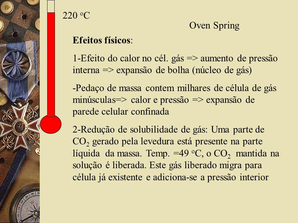220 oC Oven Spring. Efeitos físicos: 1-Efeito do calor no cél. gás => aumento de pressão interna => expansão de bolha (núcleo de gás)