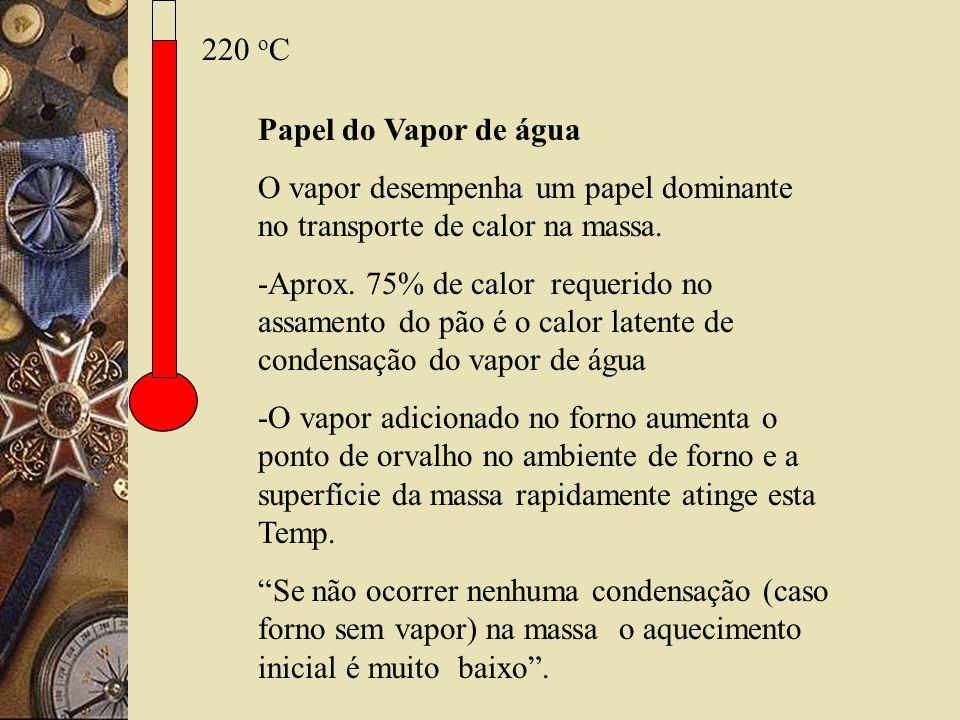 220 oC Papel do Vapor de água. O vapor desempenha um papel dominante no transporte de calor na massa.
