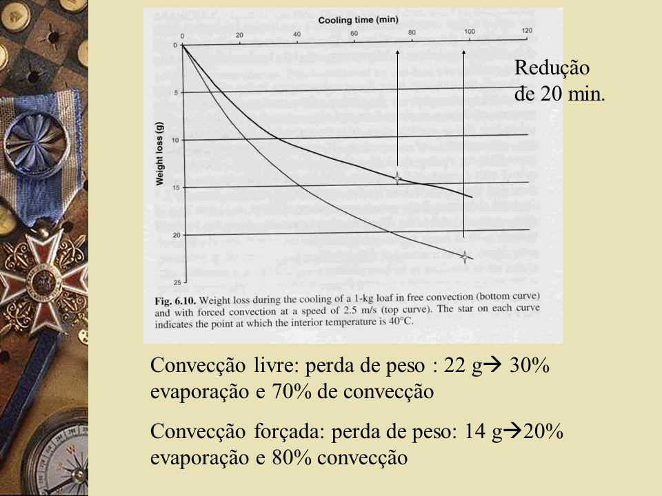 Redução de 20 min. Convecção livre: perda de peso : 22 g 30% evaporação e 70% de convecção.
