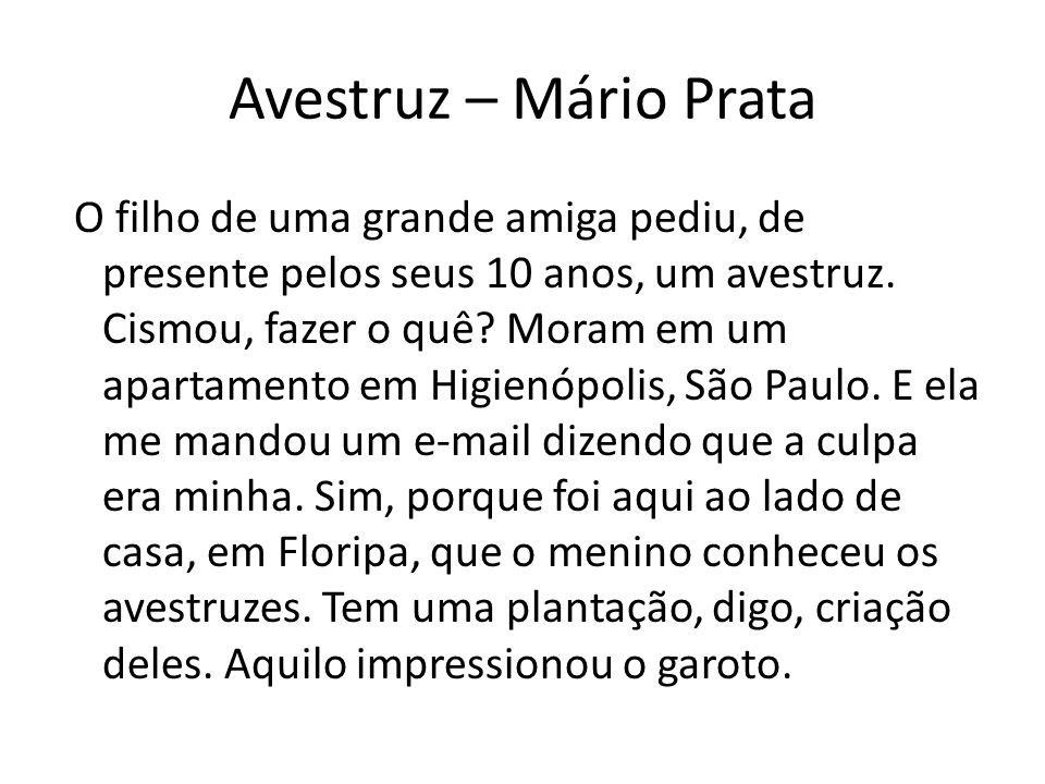 Avestruz – Mário Prata