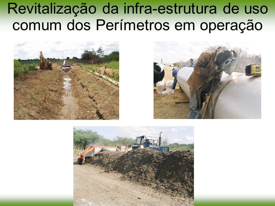 Revitalização da infra-estrutura de uso comum dos Perímetros em operação