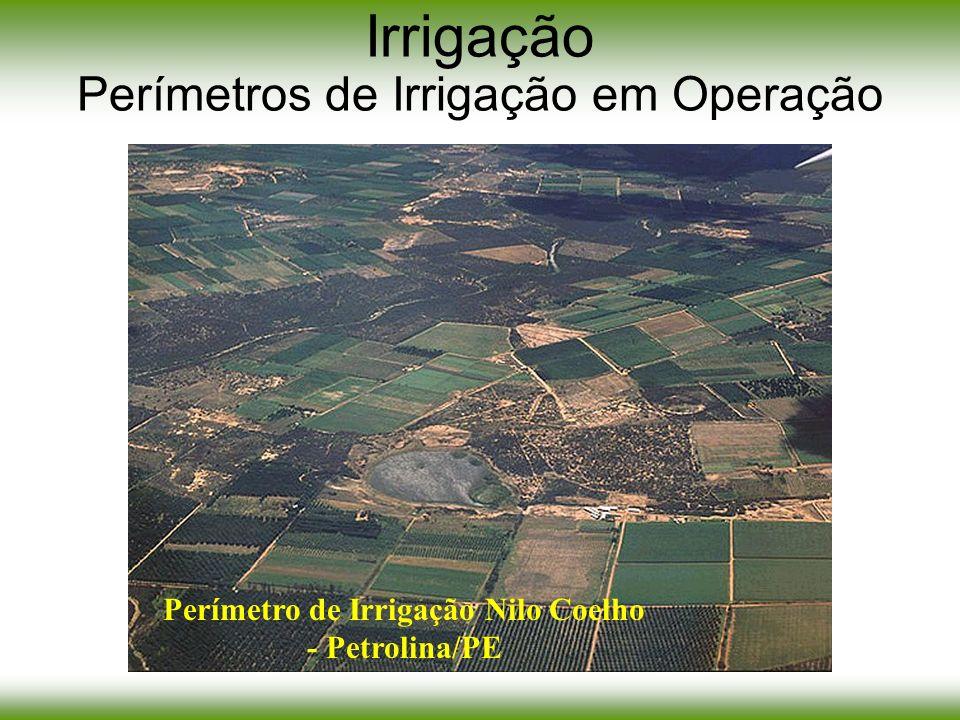 Irrigação Perímetros de Irrigação em Operação