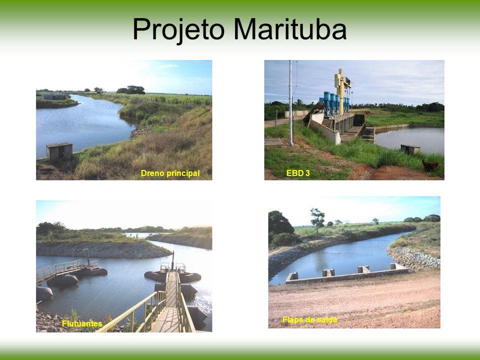 Projeto Marituba Dreno principal EBD 3 Flaps de saída Flutuantes
