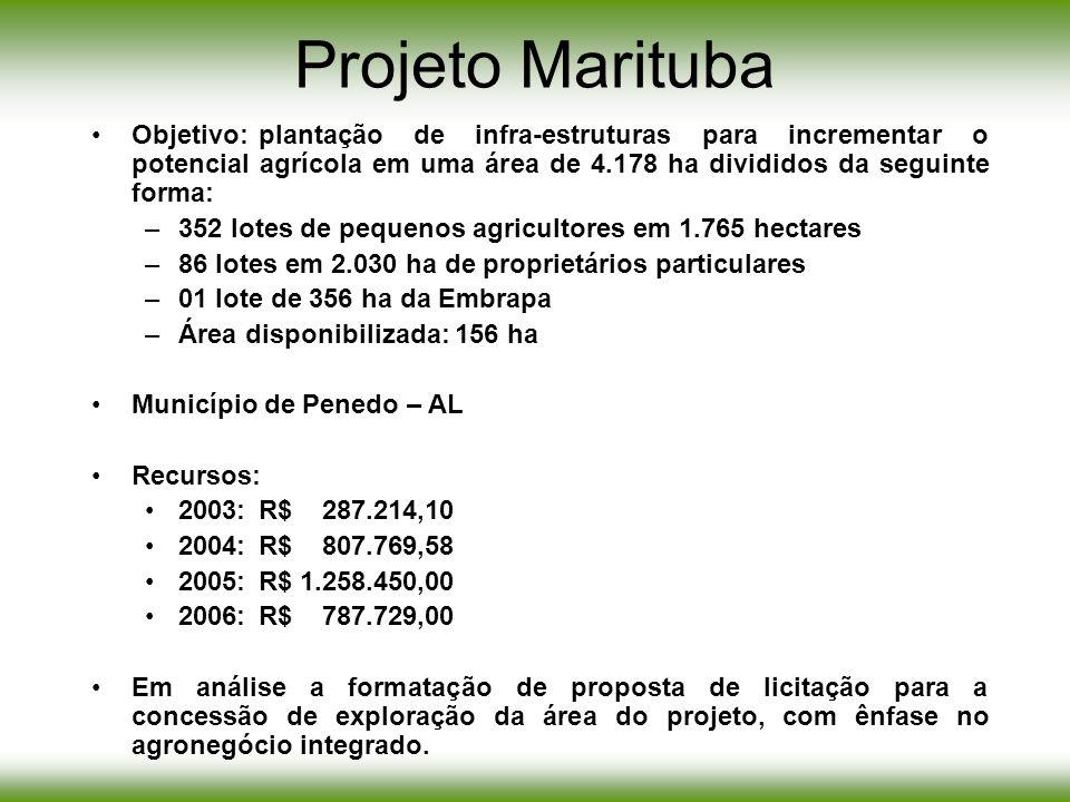 Projeto Marituba Objetivo: plantação de infra-estruturas para incrementar o potencial agrícola em uma área de 4.178 ha divididos da seguinte forma: