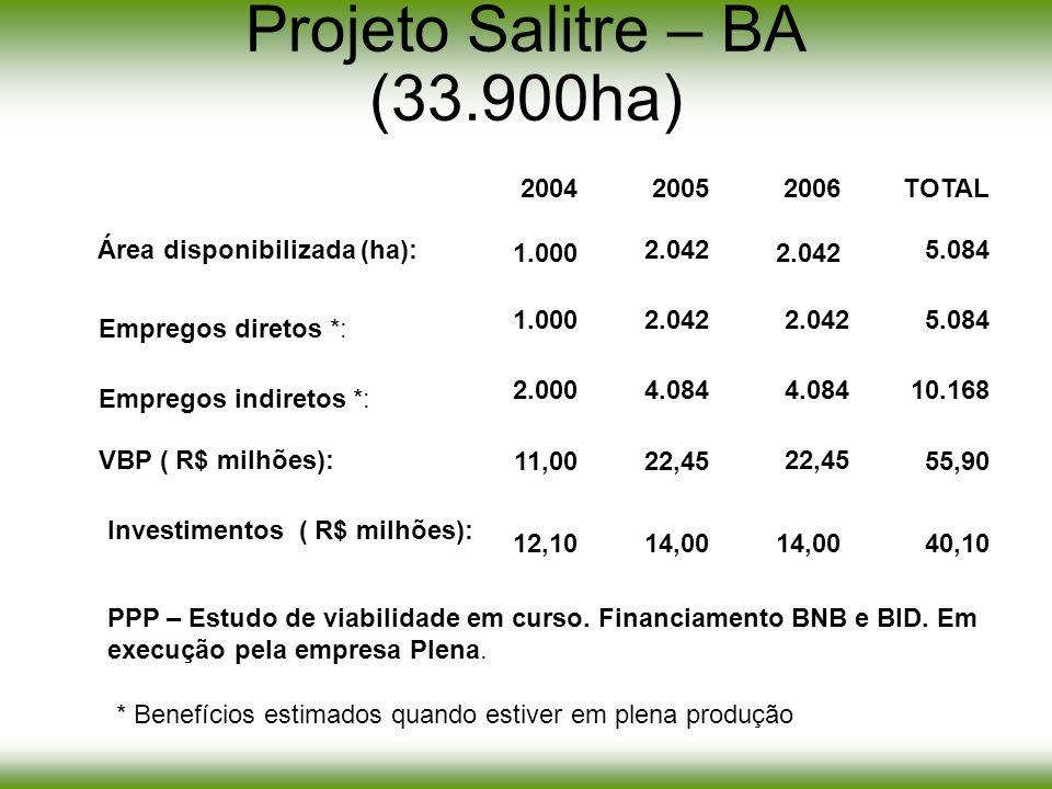 Projeto Salitre – BA (33.900ha)