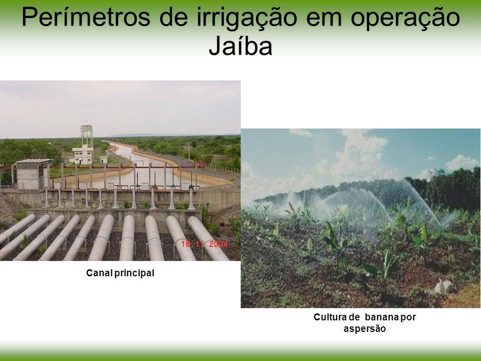 Perímetros de irrigação em operação Jaíba