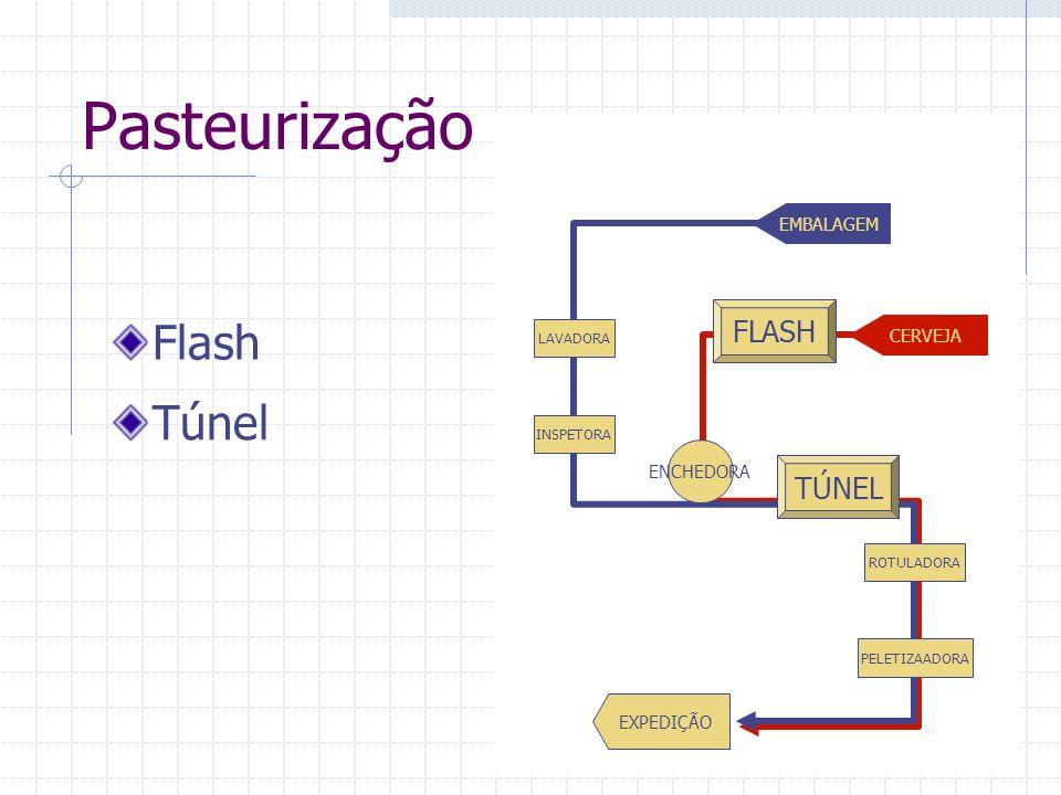 Pasteurização Flash Túnel FLASH TÚNEL EMBALAGEM CERVEJA ENCHEDORA
