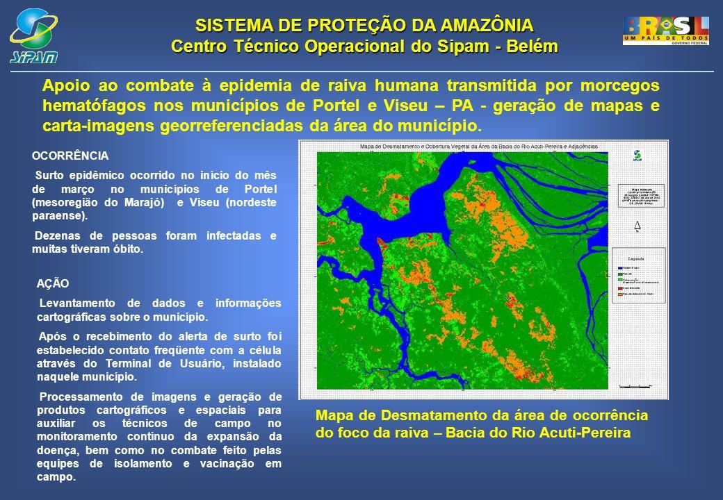 Apoio ao combate à epidemia de raiva humana transmitida por morcegos hematófagos nos municípios de Portel e Viseu – PA - geração de mapas e carta-imagens georreferenciadas da área do município.