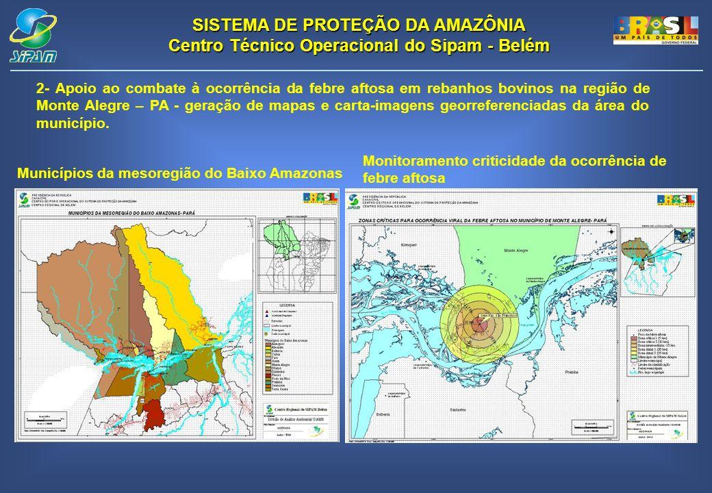 Municípios da mesoregião do Baixo Amazonas