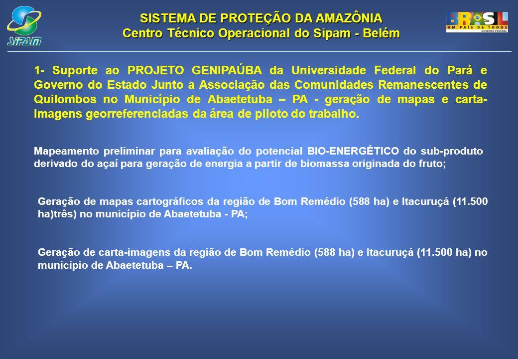 1- Suporte ao PROJETO GENIPAÚBA da Universidade Federal do Pará e Governo do Estado Junto a Associação das Comunidades Remanescentes de Quilombos no Município de Abaetetuba – PA - geração de mapas e carta-imagens georreferenciadas da área de piloto do trabalho.