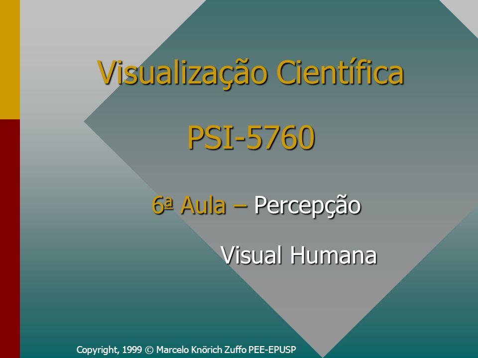 Visualização Científica PSI-5760 6a Aula – Percepção Visual Humana