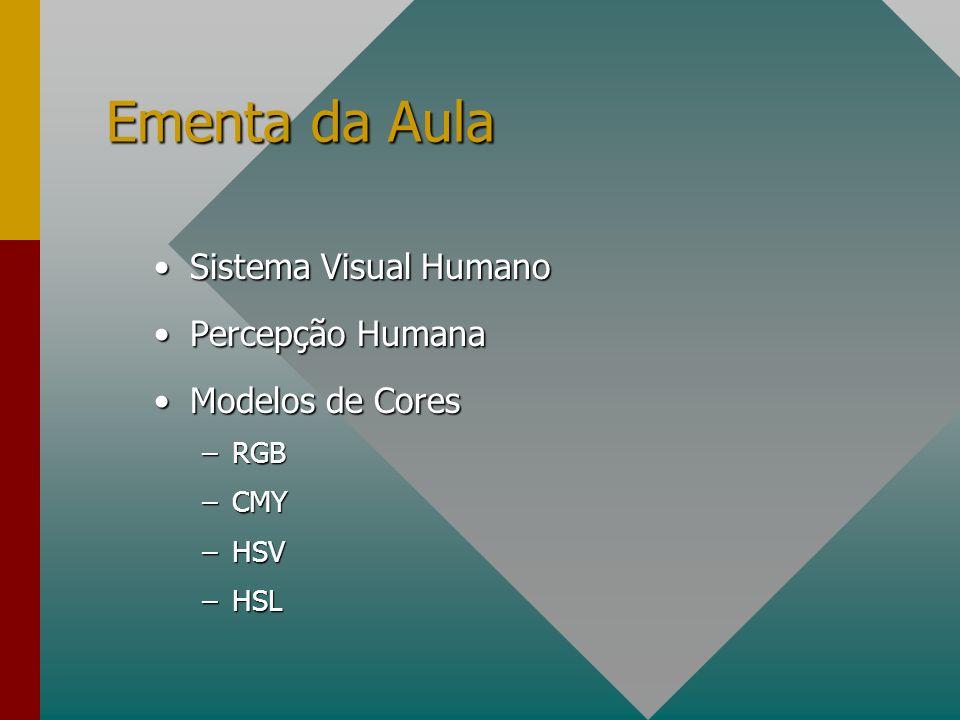 Ementa da Aula Sistema Visual Humano Percepção Humana Modelos de Cores