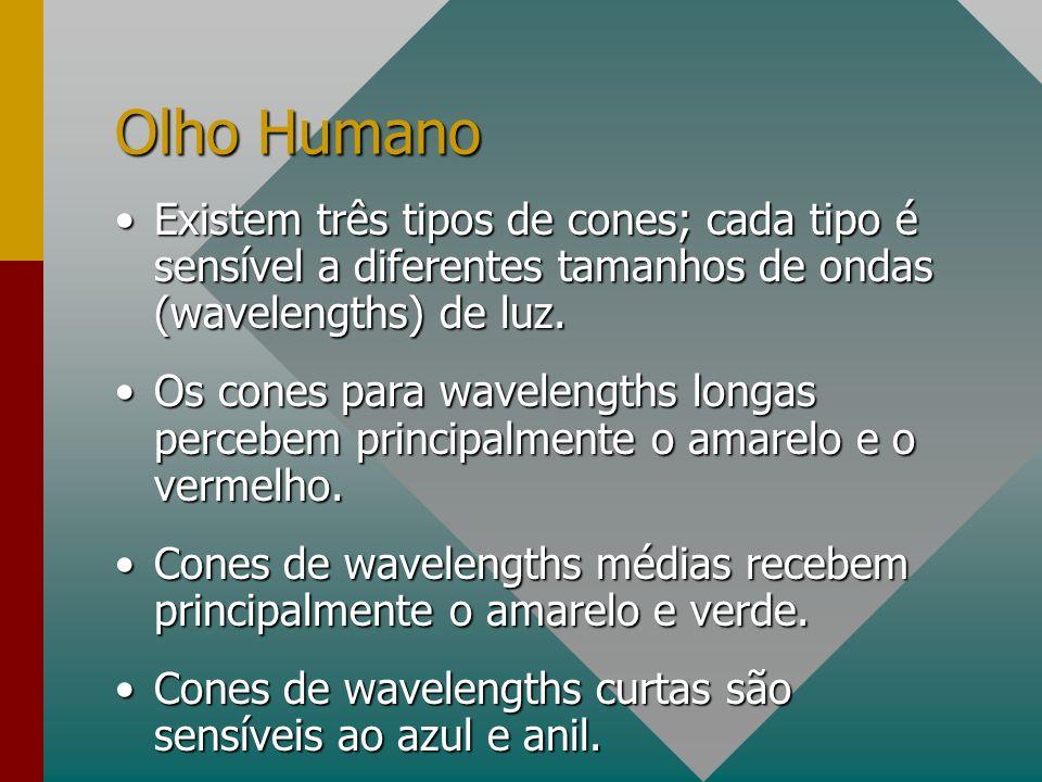 Olho Humano Existem três tipos de cones; cada tipo é sensível a diferentes tamanhos de ondas (wavelengths) de luz.