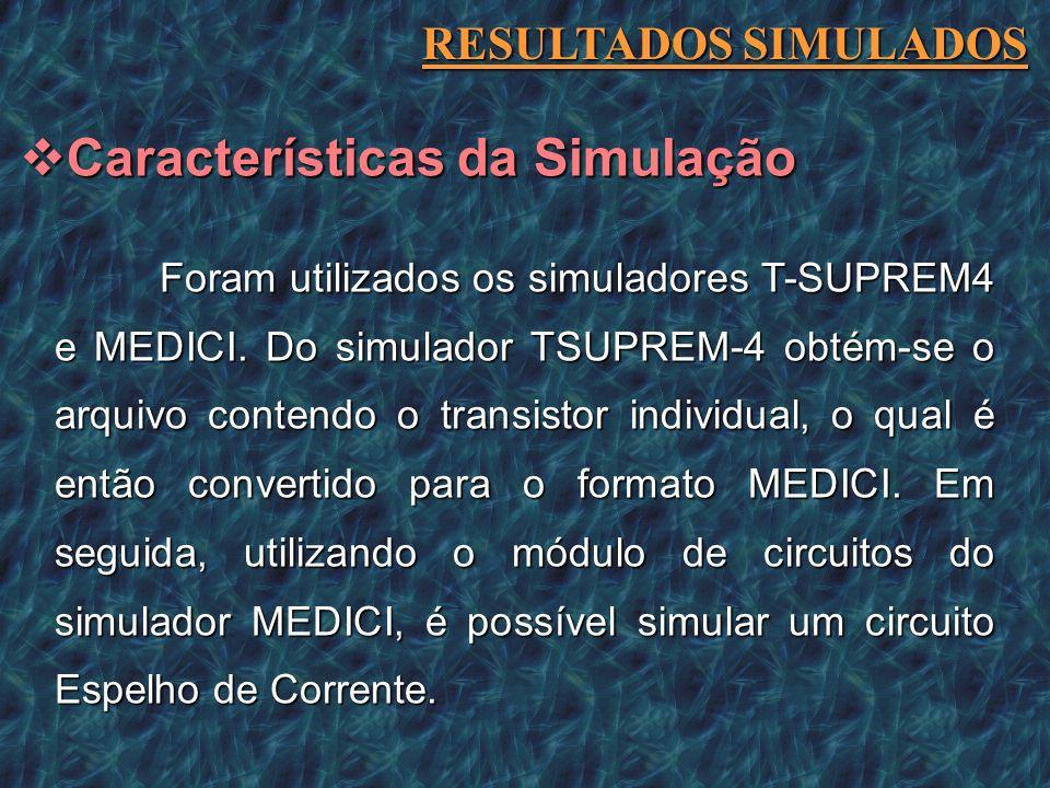 Características da Simulação