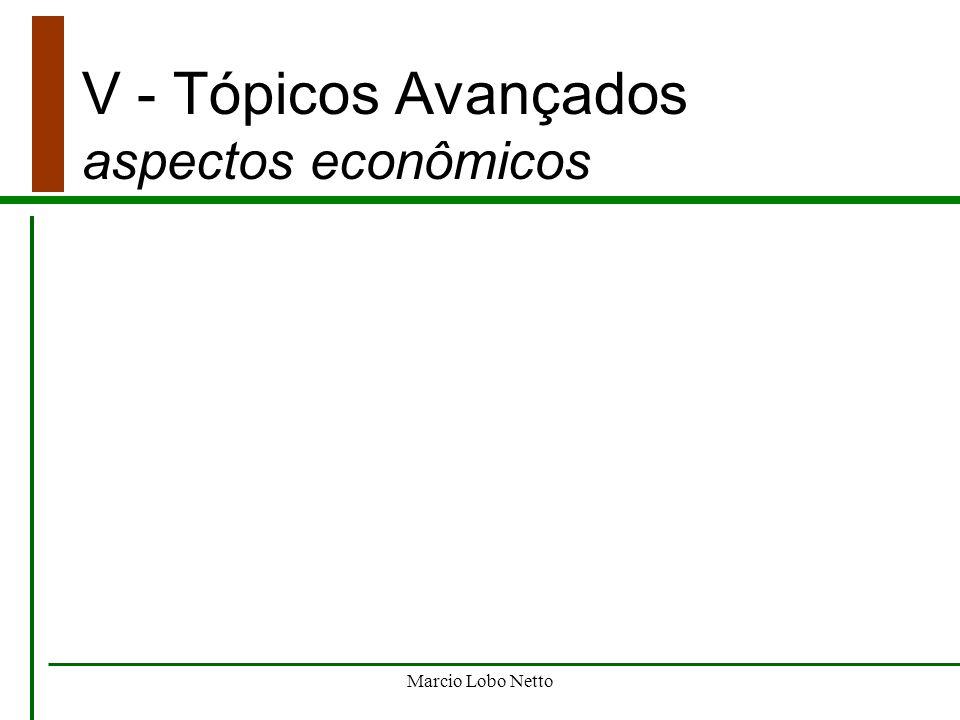 V - Tópicos Avançados aspectos econômicos