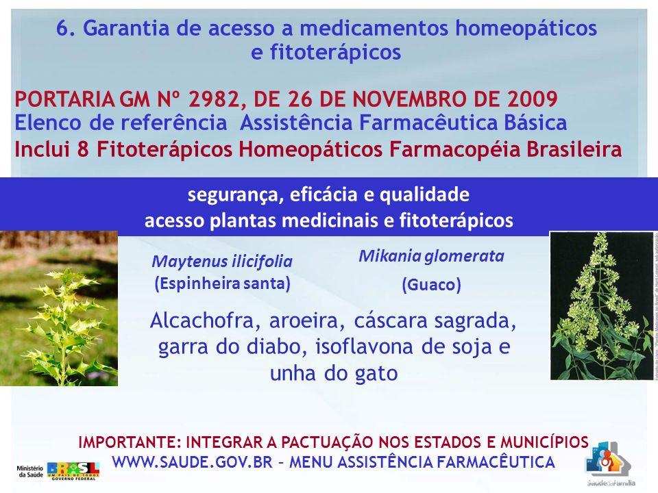 6. Garantia de acesso a medicamentos homeopáticos