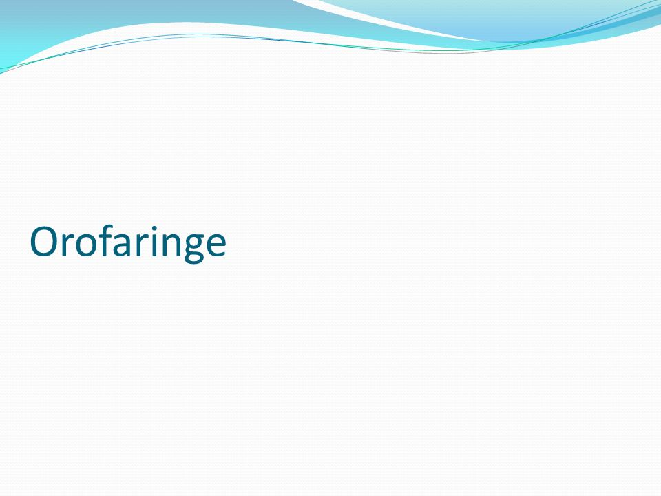 Orofaringe