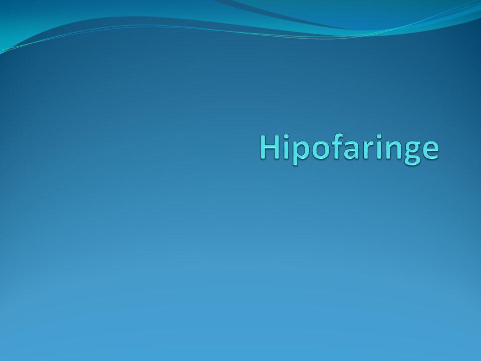 Hipofaringe