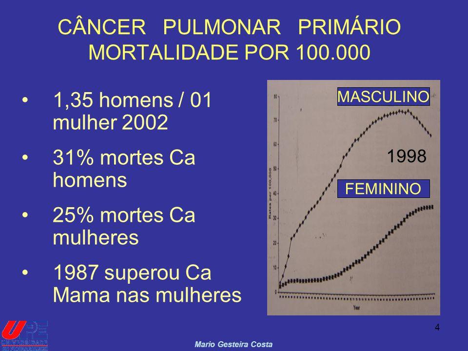 CÂNCER PULMONAR PRIMÁRIO MORTALIDADE POR 100.000