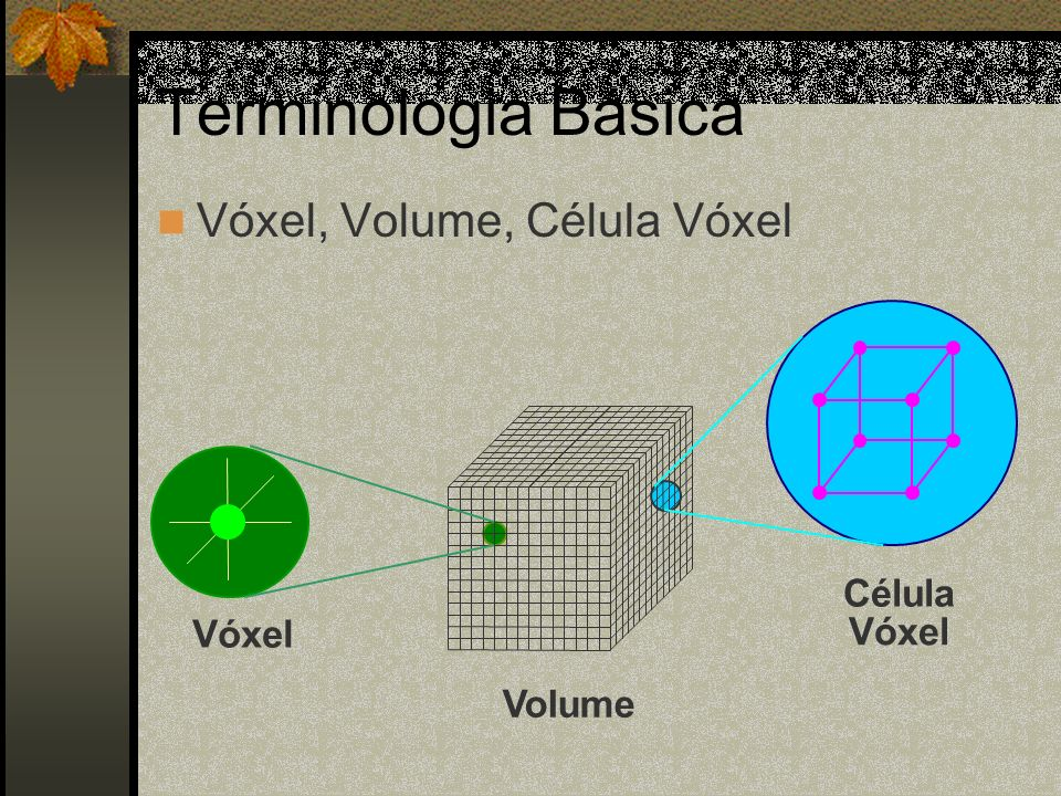 Terminologia Básica Vóxel, Volume, Célula Vóxel Célula Vóxel Vóxel