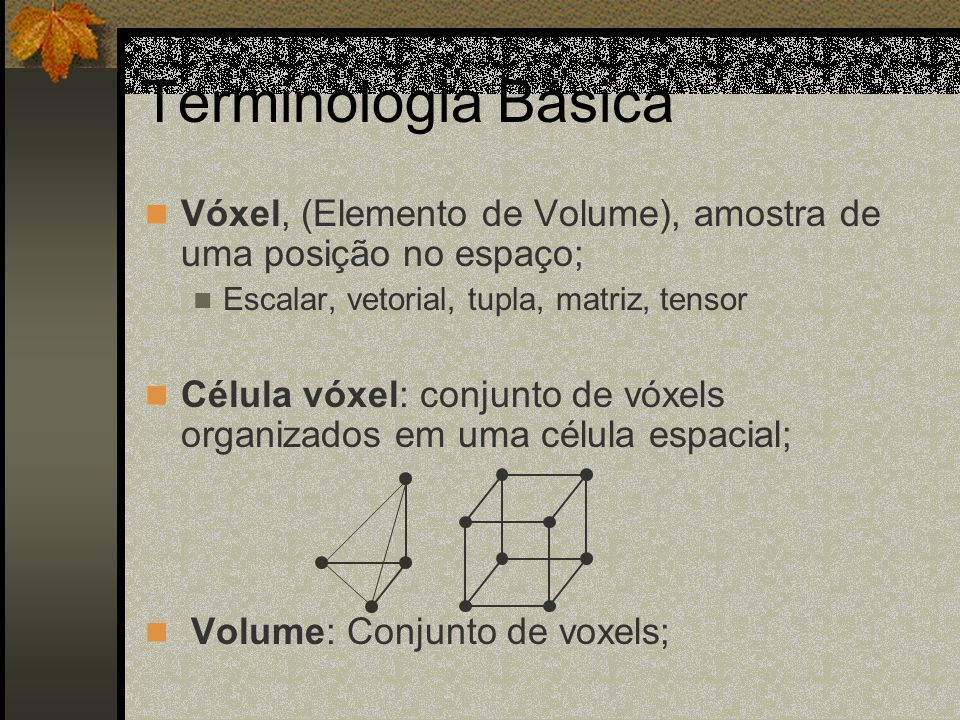 Terminologia BásicaVóxel, (Elemento de Volume), amostra de uma posição no espaço; Escalar, vetorial, tupla, matriz, tensor.