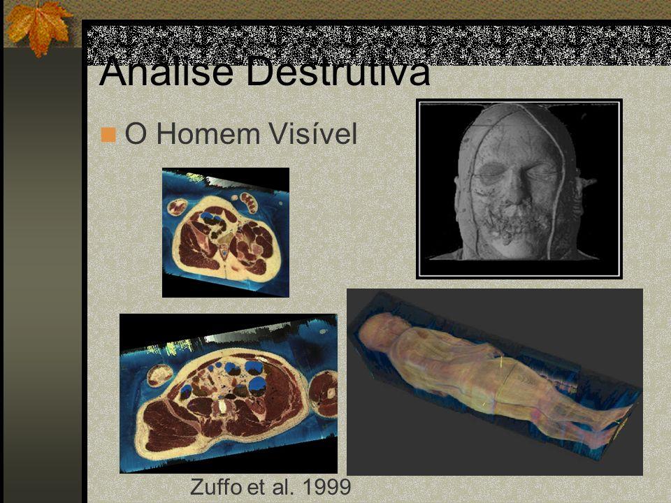 Análise Destrutiva O Homem Visível Zuffo et al. 1999