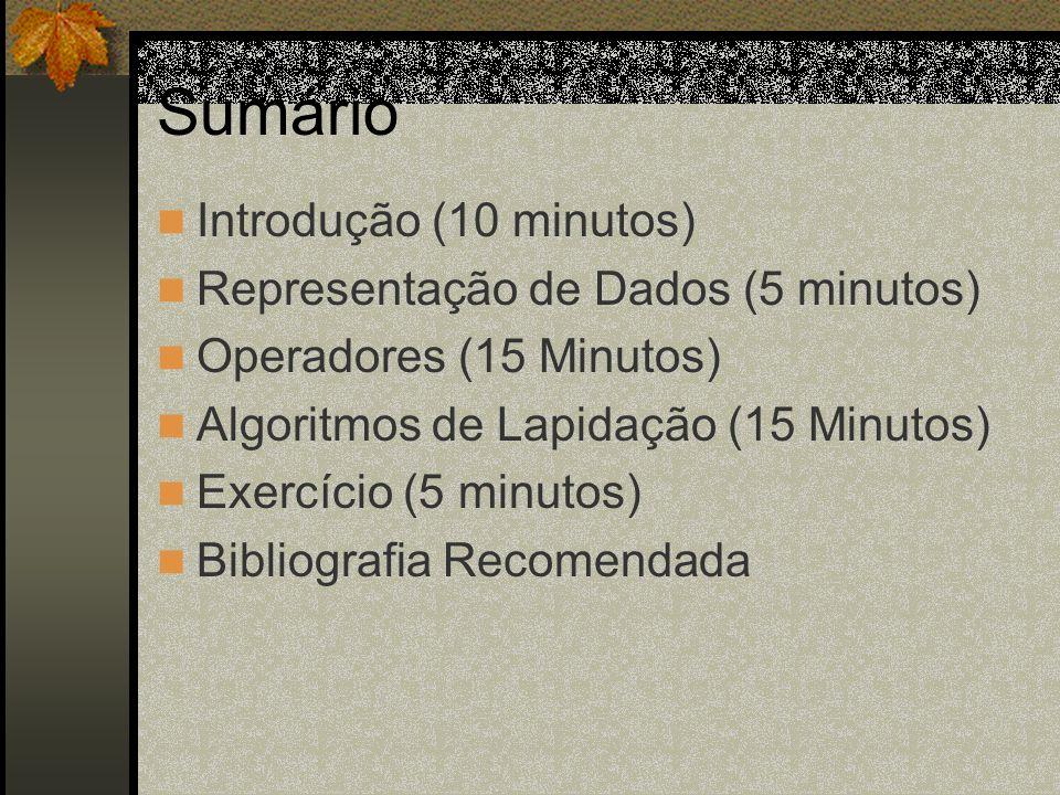 Sumário Introdução (10 minutos) Representação de Dados (5 minutos)