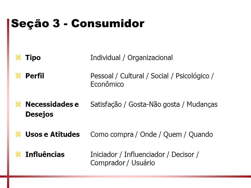 Seção 3 - Consumidor Tipo Individual / Organizacional
