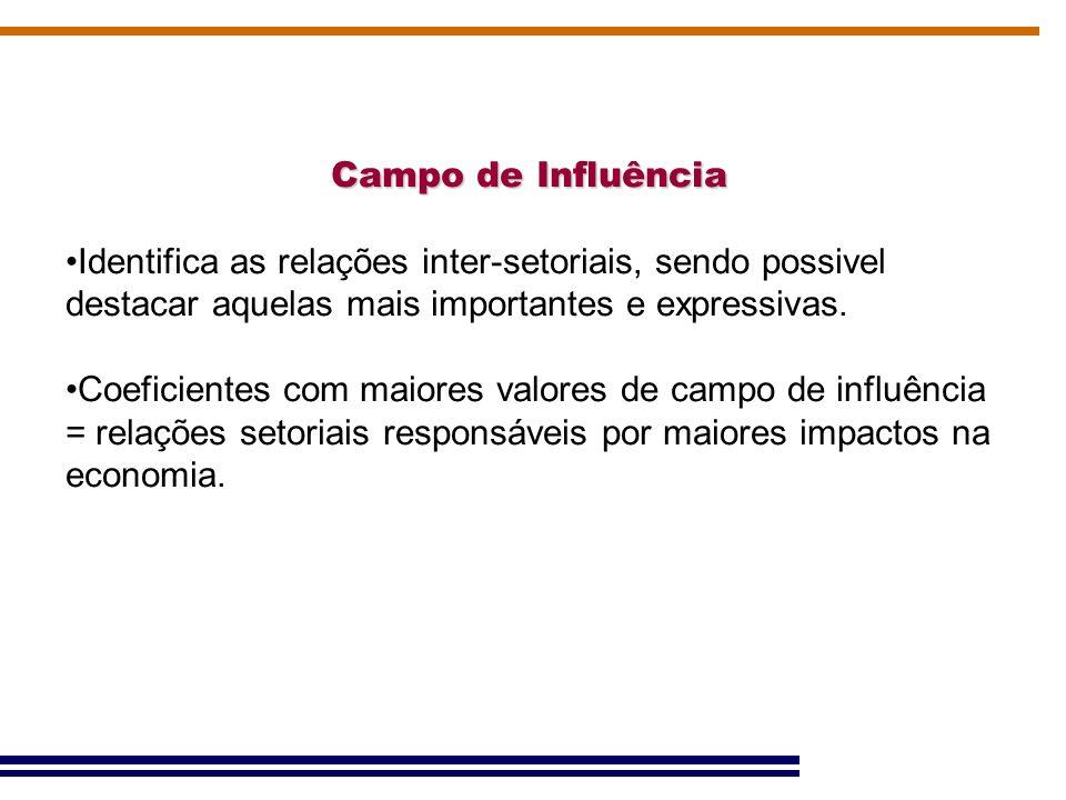 Campo de Influência Identifica as relações inter-setoriais, sendo possivel destacar aquelas mais importantes e expressivas.