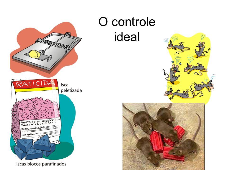 O controle ideal