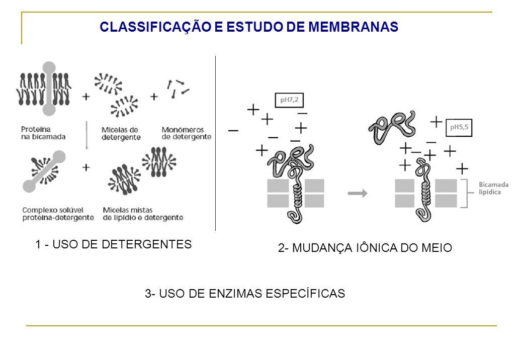 CLASSIFICAÇÃO E ESTUDO DE MEMBRANAS