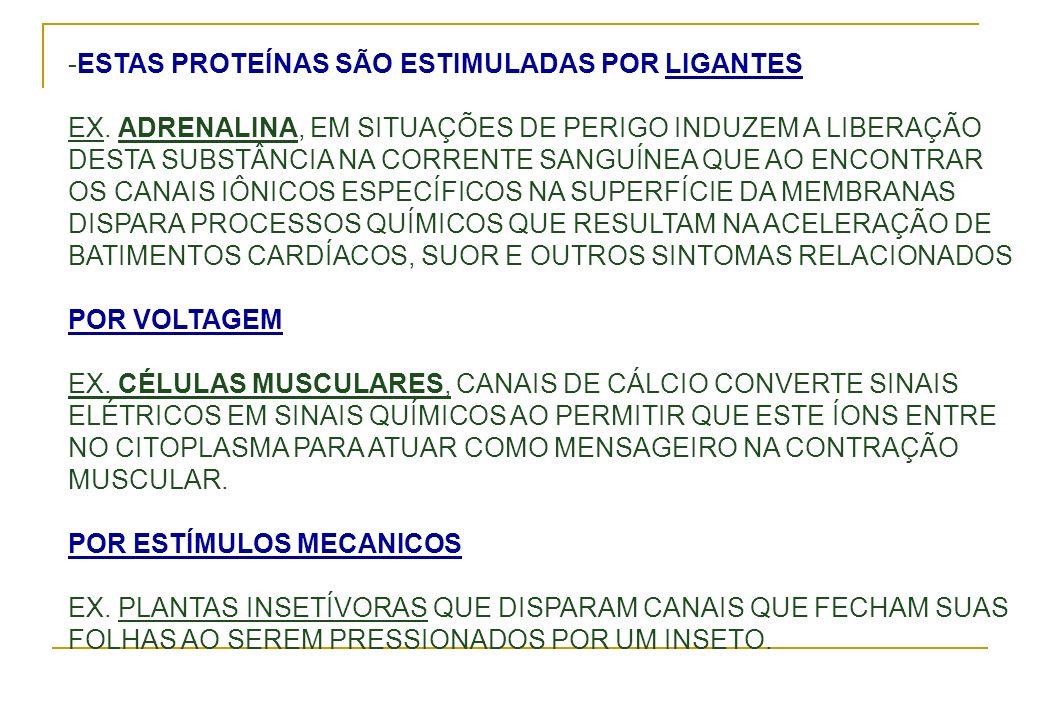 -ESTAS PROTEÍNAS SÃO ESTIMULADAS POR LIGANTES