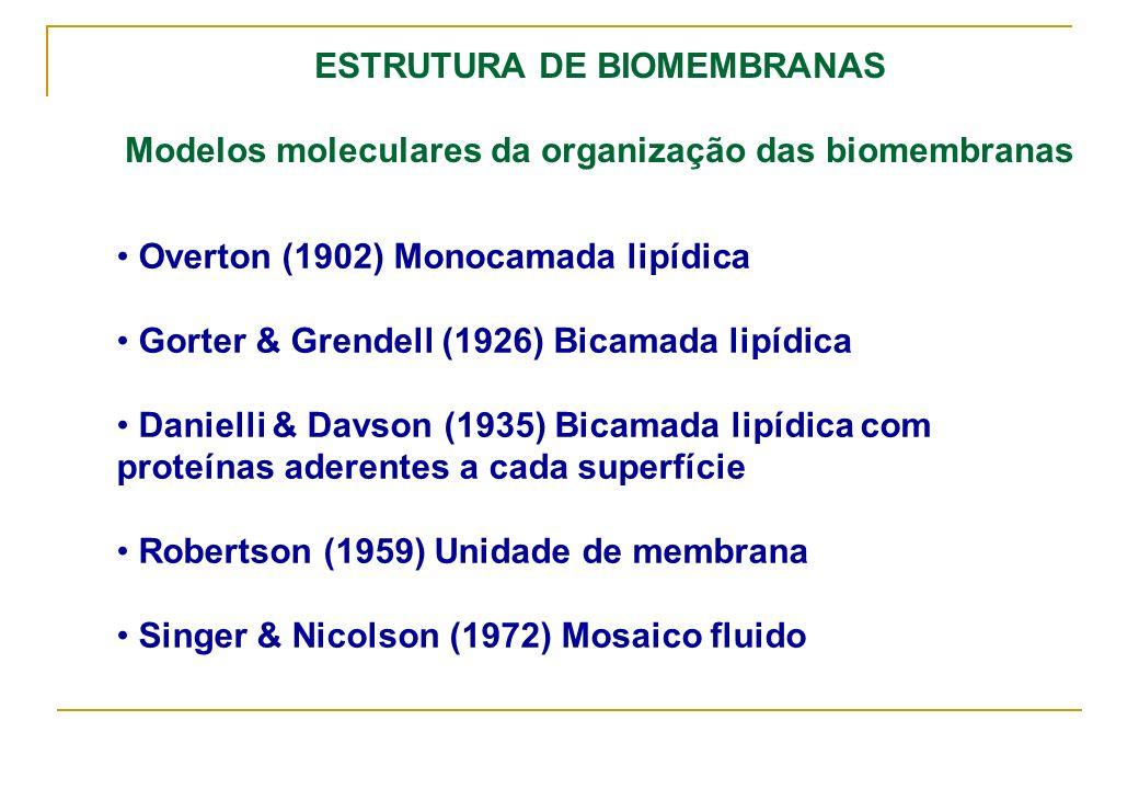 ESTRUTURA DE BIOMEMBRANAS